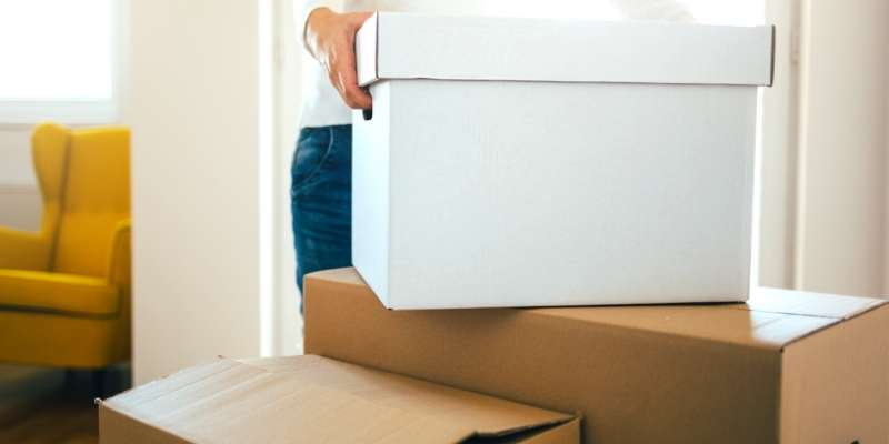 windsor-essex-best-movers
